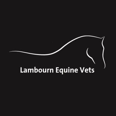 Lambourn equine vets